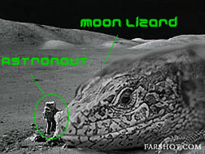 Moon Lzards love cheese